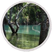 Round Beach Towel featuring the photograph Mangrove Mystique by Dianne  Connolly