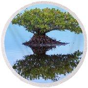 Mangrove Reflection Round Beach Towel