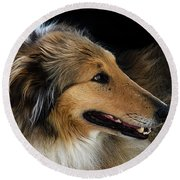 Round Beach Towel featuring the photograph Man's Best Friend by Bob Christopher