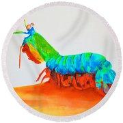 Mantis Shrimp Round Beach Towel