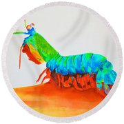 Mantis Shrimp Round Beach Towel