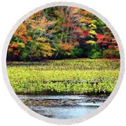 Many Colors Of Autumn Round Beach Towel