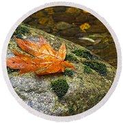 Maple Leaf On A Rock Round Beach Towel