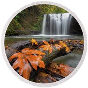 Maple Leaves On Tree Log At Hidden Falls Round Beach Towel