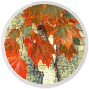 Round Beach Towel featuring the photograph Maple by Ronda Broatch