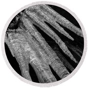 Round Beach Towel featuring the photograph March Icicles 3 by Mike Eingle