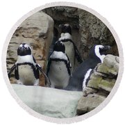 March Of The Penguins Round Beach Towel by B Wayne Mullins