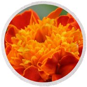 Round Beach Towel featuring the photograph Marigold Center by William Selander