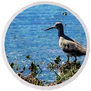 Willet Round Beach Towel