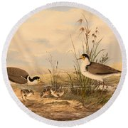 Masked Lapwing Round Beach Towel by Mountain Dreams