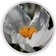 Matilija Poppy Round Beach Towel
