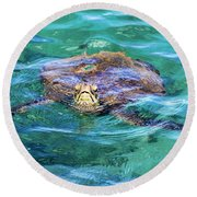Maui Sea Turtle Round Beach Towel