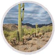 Mcdowell Cactus Round Beach Towel