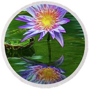 Mckee Water Lily Round Beach Towel by Larry Nieland