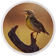Meadowlark Round Beach Towel