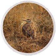 Round Beach Towel featuring the photograph Meadowlark Hiding In Grass by Robert Frederick
