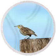 Meadowlark Roost Round Beach Towel