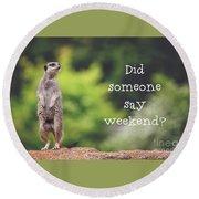 Meerkat Asking If It's The Weekend Yet Round Beach Towel