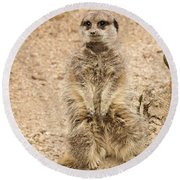 Round Beach Towel featuring the photograph Meerkat by Chris Boulton