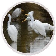 Meeting Of The Egrets Round Beach Towel