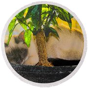 Meezer Tree Round Beach Towel