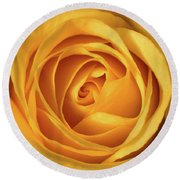 Round Beach Towel featuring the photograph Mellow Yellow Rose Square by Terry DeLuco