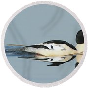 Merganser Panorama Round Beach Towel