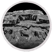 Mesa Butte Stump Round Beach Towel
