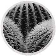 Mexican Cacti Round Beach Towel