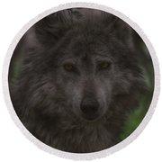 Mexican Grey Wolf Round Beach Towel