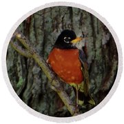 Michigan State Bird Robin Round Beach Towel