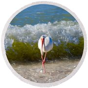 Mid Wave Feeding Round Beach Towel
