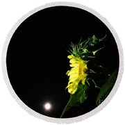 Round Beach Towel featuring the photograph Midnight Flower by Angela J Wright