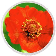 Round Beach Towel featuring the photograph Midsummer.  by Leif Sohlman