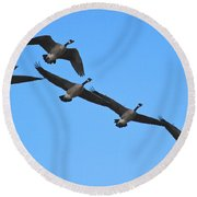 Round Beach Towel featuring the photograph Migrating Geese by Ann E Robson