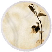 Milk Weed In A Bottle Round Beach Towel by Bob Orsillo