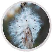 Round Beach Towel featuring the digital art Milkweed And Its Seeds by Chris Flees