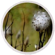 Milkweed In A Field Round Beach Towel