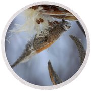 Round Beach Towel featuring the photograph Milkweed by Viviana  Nadowski