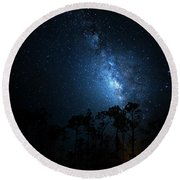 Round Beach Towel featuring the photograph Milky Way At Big Cypress National Preserve by Mark Andrew Thomas