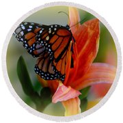 Mingle With A Monarch Round Beach Towel