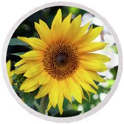 Round Beach Towel featuring the photograph Mini Sunflower by Jeff Severson