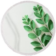 Round Beach Towel featuring the photograph Minimal Green by Andrea Anderegg