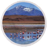 Round Beach Towel featuring the photograph Mirage by Skip Hunt