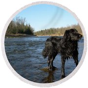 Round Beach Towel featuring the photograph Mississippi River Dog On The Rocks by Kent Lorentzen