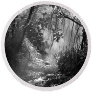 Mist In The Jungle Round Beach Towel by Susan Lafleur