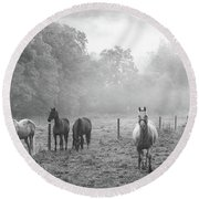 Misty Morning Horses Round Beach Towel