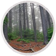 Misty Morning In An Algonquin Forest Round Beach Towel