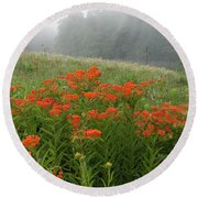 Misty Summer Morning - D010124 Round Beach Towel