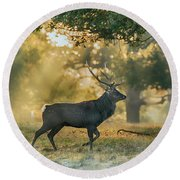 Round Beach Towel featuring the photograph Misty Walk by Scott Carruthers